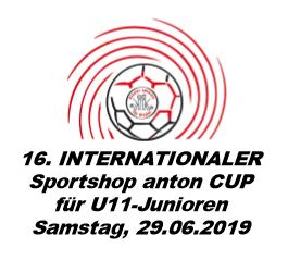 Vorläufiges Logo INTCUP 2019
